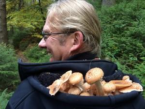Ab in die Pilze / Workshop @ Weltbühne Heckenbeck