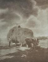 Ausstellungseröffnung »Bertha Zillessen (1872-1936) – Fotografische Entdeckungen«